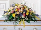 TENDER SENTIMENTS Half casket spray of roses, gerbera daisies, carnations, monte casino and blue delphinium