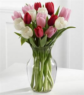 Mixed Tulips in clear vase Spring/ vase