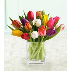 Mixed Tulips Fresh Flowers