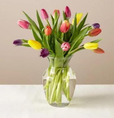 Mixed vase of tulips