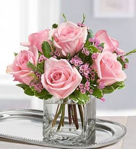 CUBE VASE WITH 6 PINK ROSES WITH FILLER!  Wax flower if in season or baby's breath. ( roses vary in light to dark pink weekly)