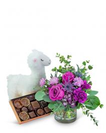 Mod Magenta Gift Ensemble Flower Arrangement