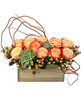 Lover's Sunrise Modern Arrangement in Alexandria, Indiana | OUSLEY'S HARVEST GARDENS
