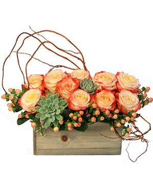 Lover's Sunrise Modern Arrangement in Springfield, MO | FLOWERAMA #142