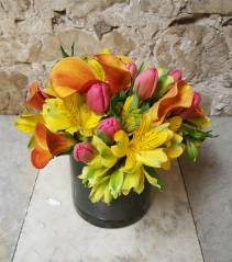 Modern Blooms