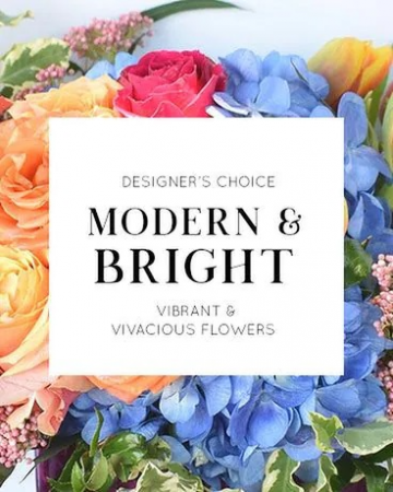 Modern & Bright Designer's Choice