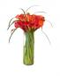 The Modern Calla  Fall Cut Flower Arrangement