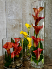 Modern Callas Calla lilies with greenery and stones in vase
