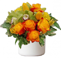 Modern Citrusy Twist Cut Flowers