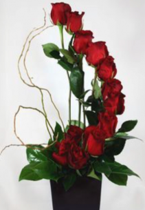 Modern Dozen Roses  Red Rose Arrangement
