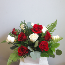 Modern Dozen Roses  *Indicate rose color choice in Special Instructions*