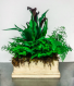 Fresh Cut Arrangement in Artisan Box