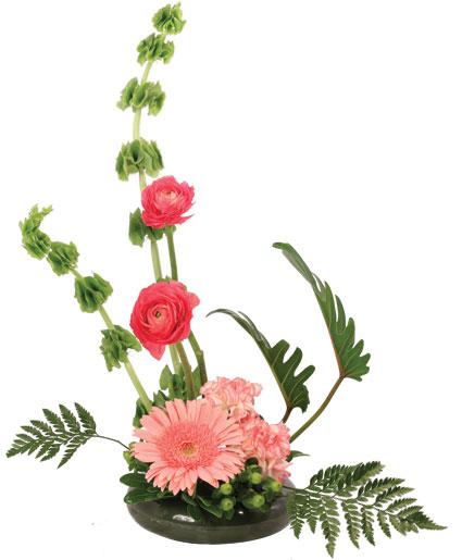 Modern Grace Floral Design