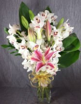 Modern Orchids - White