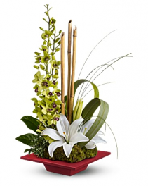 Modern Orchids And Lilies Flower Arrangement