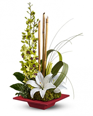 Modern Orchids And Lilies Flower Arrangement in Tulsa, OK | THE WILD ORCHID FLORIST