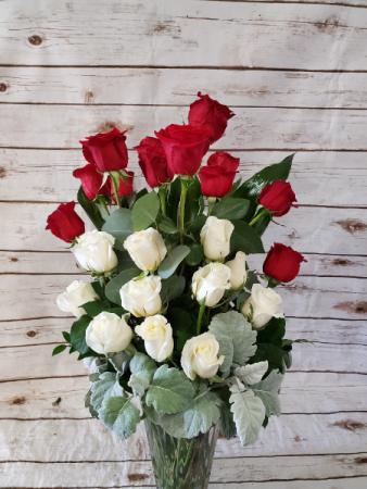 Modern Red & White Roses  2 Dozen