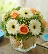 Modern Rose and Gerbera Daisy All-around Floral arrangement