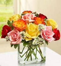 Modern Roses - One Dozen Floral Arrangement