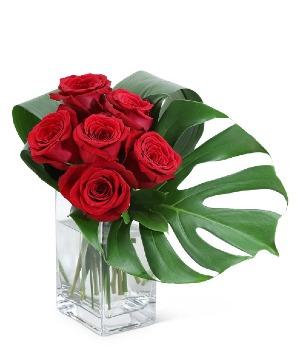 Modern Roses (6) Flower Arrangement in Nevada, IA | Flower Bed
