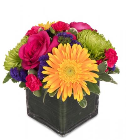 Modern Spring vase  Vase