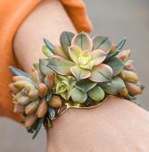 Modern Succulent - Gold Cuff Corsage