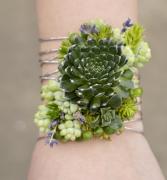 Modern Succulent - Silver Cuff Corsage