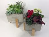 Modern Succulent Cube Desk Planter