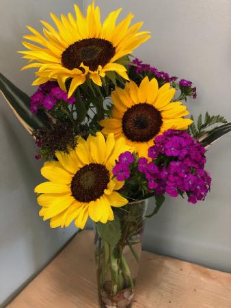 Modern Sunflowers fresh flowers