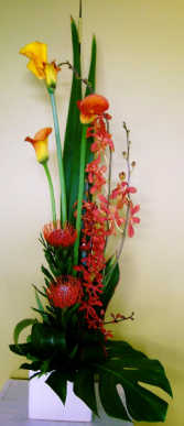 Modern Tropical arrangement Arrangement