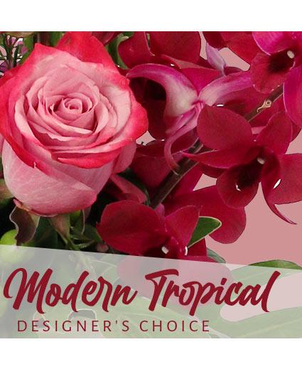 Modern Tropical Beauty Designer's Choice