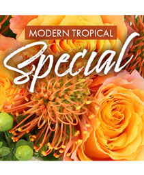 Modern Tropical Special Designer's Choice
