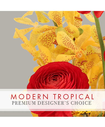 Modern Tropical Stunner Premium Designer's Choice