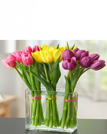 Modern Tulips Arrangement