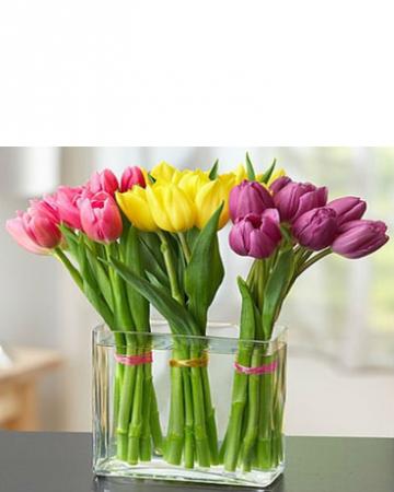 Modern Tulips Arrangement