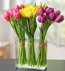 Modern Tulips  Modern Twist to a Traditional Favorite!