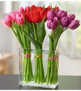 Modern Tulips for Your Valentine Arrangement