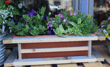 Modern Wood Frame Deck Planter Colorful Mixed Annuals