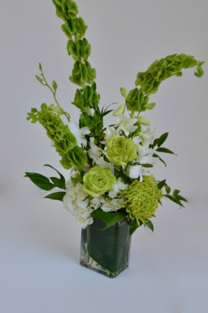 Luck of the Irish Vase arrangement. in Coral Springs, FL | Hearts & Flowers of Coral Springs