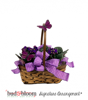 *SOLD OUT* Mom's Butterflies & Violets Basket Bud & Bloom Signature Arrangement