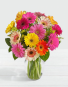 MOM'S COLORFUL GERBERA DAISIES Exclusively at Mom & Pops