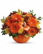 Mom's Country Pumpkin Fall in Ventura, California | Mom And Pop Flower Shop