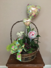 moms pretty little garden basket with asst green plants and blooming with asst mini mylars  and mothers day pic