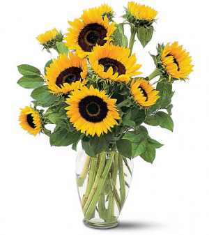 Mom's Shining Sunflower Exclusively at Mom & Pops in Oxnard, CA | Mom and Pop Flower Shop
