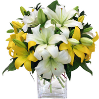 Mom's Yellow & White Lily Exclusively at Mom & Pops in Oxnard, CA | Mom and Pop Flower Shop
