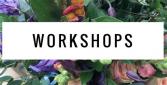 monthly workshop