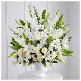 Morning Stars Funeral Arrangement