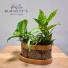 Morocco Planter Planter