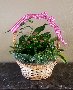 Mom & Pop's Basket 8 Exclusively at Mom & Pops in Ventura, CA | Mom And Pop Flower Shop