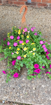 Mother's Day Plant Basket